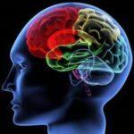 Психосоматика жизнь или болезнь Бобкова
