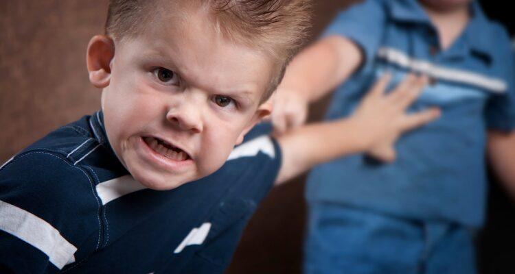 Детский психолог агрессия